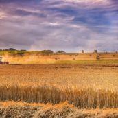 Jakie maszyny są potrzebne na gospodarstwie rolniczym i do czego służą