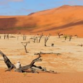 5 najpiękniejszych miejsc w Namibii – co warto tu zobaczyć?